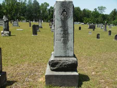 IVY, JAMES C - Calhoun County, Arkansas | JAMES C IVY - Arkansas Gravestone Photos