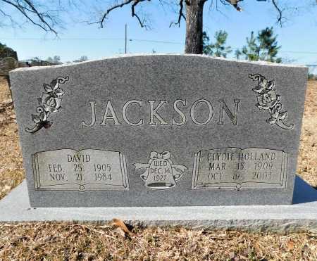 JACKSON, DAVID - Calhoun County, Arkansas | DAVID JACKSON - Arkansas Gravestone Photos
