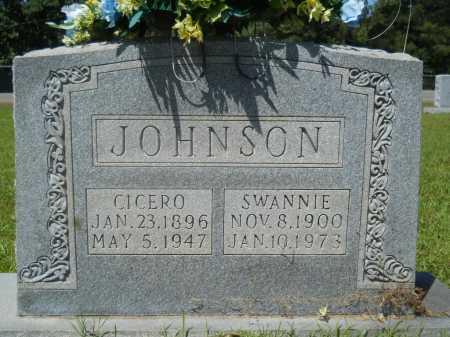 JOHNSON, SWANNIE - Calhoun County, Arkansas | SWANNIE JOHNSON - Arkansas Gravestone Photos
