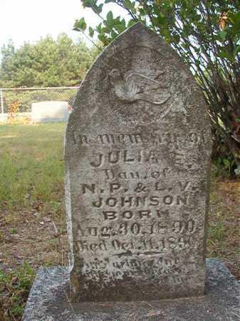 JOHNSON, JULIA E - Calhoun County, Arkansas | JULIA E JOHNSON - Arkansas Gravestone Photos