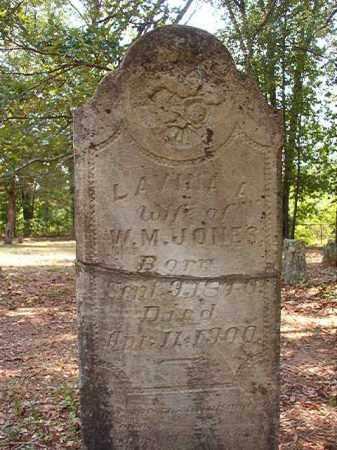 JONES, LAVINA MARGARET - Calhoun County, Arkansas   LAVINA MARGARET JONES - Arkansas Gravestone Photos