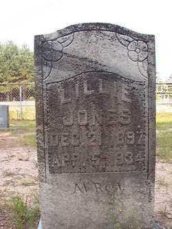 JONES, LILLIE - Calhoun County, Arkansas | LILLIE JONES - Arkansas Gravestone Photos