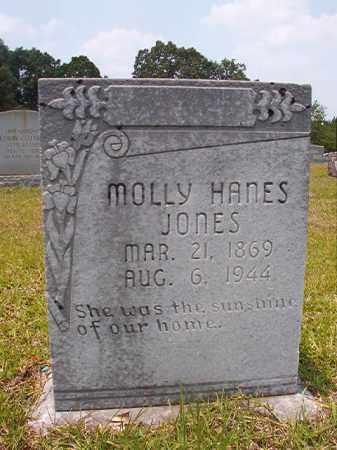 HANES JONES, MOLLY - Calhoun County, Arkansas | MOLLY HANES JONES - Arkansas Gravestone Photos