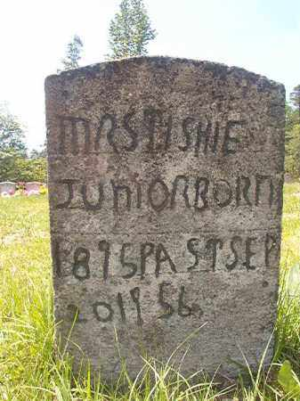 JUNIOR, TISHIE - Calhoun County, Arkansas | TISHIE JUNIOR - Arkansas Gravestone Photos