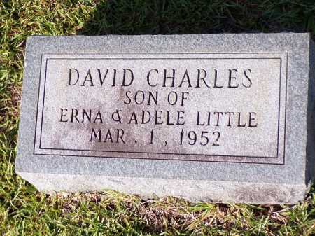 LITTLE, DAVID CHARLES - Calhoun County, Arkansas | DAVID CHARLES LITTLE - Arkansas Gravestone Photos