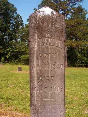 MCKINNIE, W W - Calhoun County, Arkansas   W W MCKINNIE - Arkansas Gravestone Photos