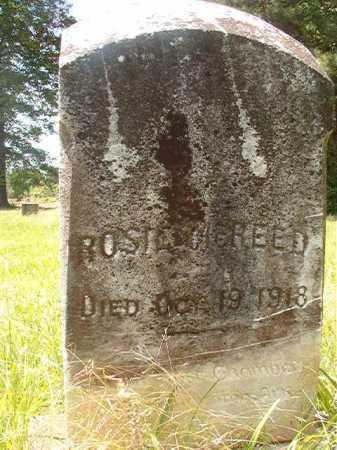 MCREED, ROSIE - Calhoun County, Arkansas | ROSIE MCREED - Arkansas Gravestone Photos