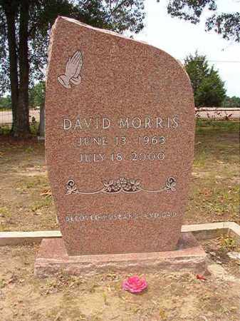 MORRIS, DAVID - Calhoun County, Arkansas | DAVID MORRIS - Arkansas Gravestone Photos