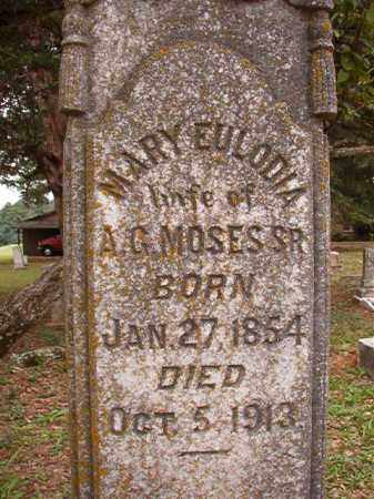 MOSES, MARY EULDOIA - Calhoun County, Arkansas | MARY EULDOIA MOSES - Arkansas Gravestone Photos