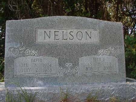 NELSON, DAVID - Calhoun County, Arkansas   DAVID NELSON - Arkansas Gravestone Photos