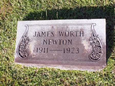 NEWTON, JAMES WORTH - Calhoun County, Arkansas | JAMES WORTH NEWTON - Arkansas Gravestone Photos