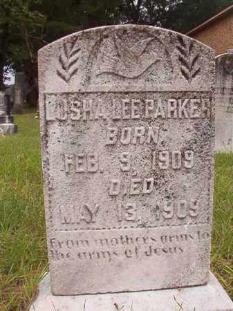 PARKER, LUSHA LEE - Calhoun County, Arkansas | LUSHA LEE PARKER - Arkansas Gravestone Photos