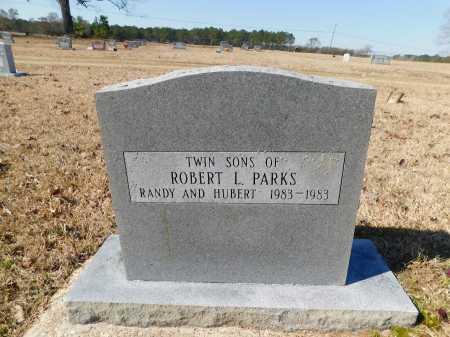 PARKS, RANDY - Calhoun County, Arkansas | RANDY PARKS - Arkansas Gravestone Photos