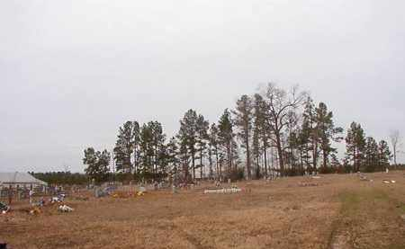 *PICKETT (AFRICAN-AMERICAN) CE,  - Calhoun County, Arkansas |  *PICKETT (AFRICAN-AMERICAN) CE - Arkansas Gravestone Photos