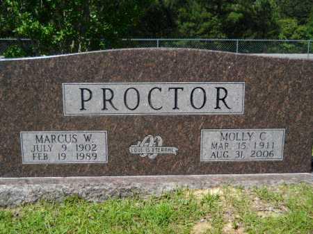 PROCTOR, MOLLY C - Calhoun County, Arkansas | MOLLY C PROCTOR - Arkansas Gravestone Photos