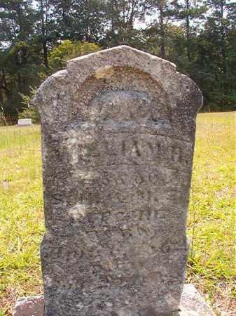 RITCHIE, WILLIAM H - Calhoun County, Arkansas | WILLIAM H RITCHIE - Arkansas Gravestone Photos