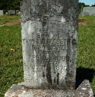 ROWLAND, ARTO - Calhoun County, Arkansas | ARTO ROWLAND - Arkansas Gravestone Photos