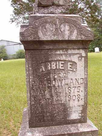 ROWLAND, ABBIE E - Calhoun County, Arkansas | ABBIE E ROWLAND - Arkansas Gravestone Photos