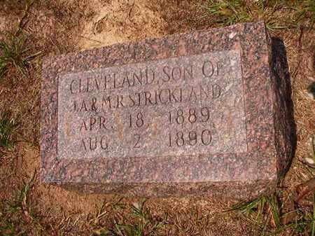 STRICKLAND, CLEVELAND - Calhoun County, Arkansas | CLEVELAND STRICKLAND - Arkansas Gravestone Photos