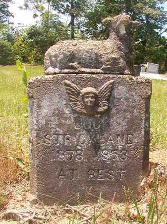 STRICKLAND, DOCK - Calhoun County, Arkansas | DOCK STRICKLAND - Arkansas Gravestone Photos