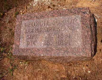 STRICKLAND, GEORGIE - Calhoun County, Arkansas   GEORGIE STRICKLAND - Arkansas Gravestone Photos