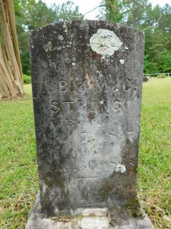 STRONG, LAURA B - Calhoun County, Arkansas | LAURA B STRONG - Arkansas Gravestone Photos
