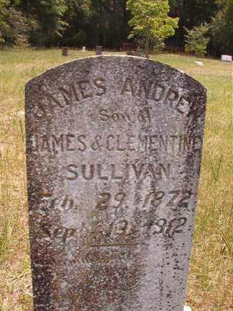 SULLIVAN, JAMES ANDREW - Calhoun County, Arkansas | JAMES ANDREW SULLIVAN - Arkansas Gravestone Photos