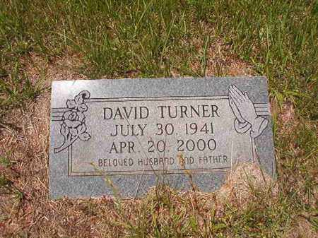 TURNER, DAVID - Calhoun County, Arkansas | DAVID TURNER - Arkansas Gravestone Photos