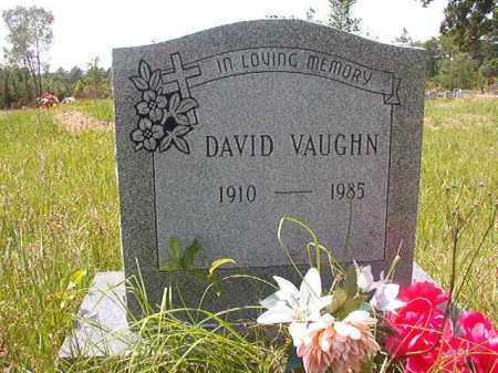 VAUGHN, DAVID - Calhoun County, Arkansas   DAVID VAUGHN - Arkansas Gravestone Photos