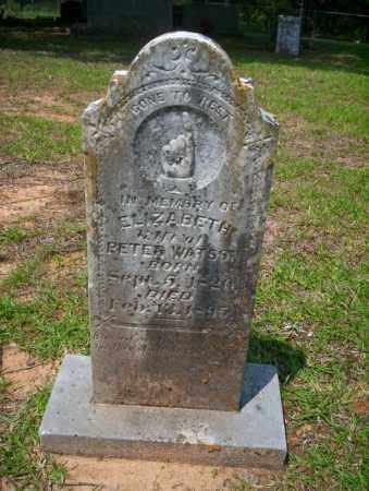 WATSON, ELIZABETH - Calhoun County, Arkansas | ELIZABETH WATSON - Arkansas Gravestone Photos