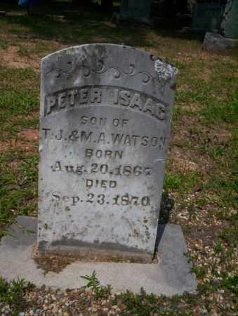 WATSON, PETER ISAAC - Calhoun County, Arkansas | PETER ISAAC WATSON - Arkansas Gravestone Photos