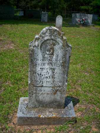 WATSON, PETER - Calhoun County, Arkansas | PETER WATSON - Arkansas Gravestone Photos