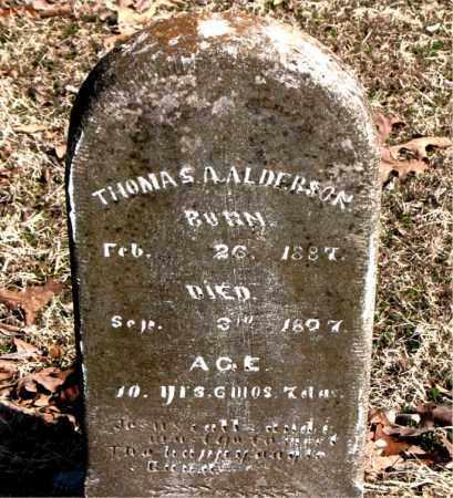 ALDERSON, THOMAS A. - Carroll County, Arkansas | THOMAS A. ALDERSON - Arkansas Gravestone Photos