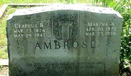 AMBROSE, MARTHA A. - Carroll County, Arkansas | MARTHA A. AMBROSE - Arkansas Gravestone Photos