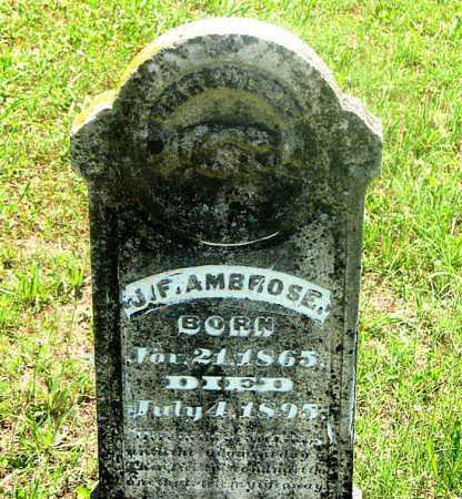 AMBROSE, JOHN F. - Carroll County, Arkansas | JOHN F. AMBROSE - Arkansas Gravestone Photos