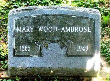 AMBROSE, MARY - Carroll County, Arkansas   MARY AMBROSE - Arkansas Gravestone Photos