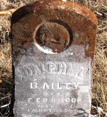 BAILEY, DALPHA L. - Carroll County, Arkansas   DALPHA L. BAILEY - Arkansas Gravestone Photos