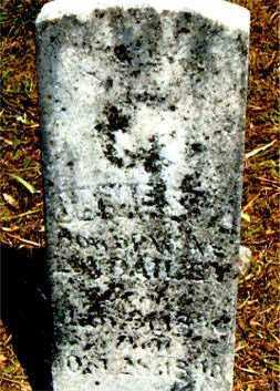 BAILEY, JAMES - Carroll County, Arkansas | JAMES BAILEY - Arkansas Gravestone Photos