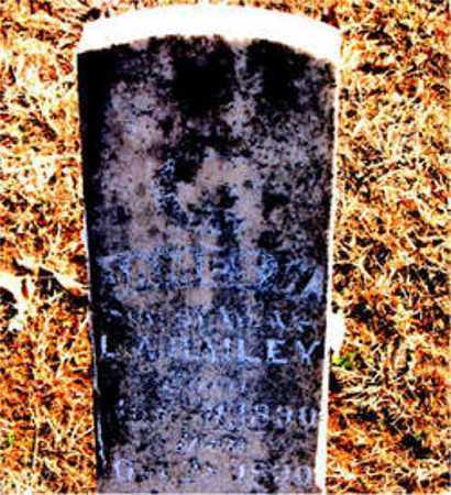 BAILEY, JAMES W. - Carroll County, Arkansas   JAMES W. BAILEY - Arkansas Gravestone Photos
