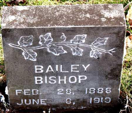 BISHOP, BAILEY - Carroll County, Arkansas | BAILEY BISHOP - Arkansas Gravestone Photos
