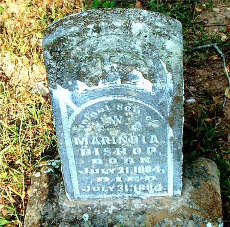 BISHOP, INFANT SON - Carroll County, Arkansas | INFANT SON BISHOP - Arkansas Gravestone Photos