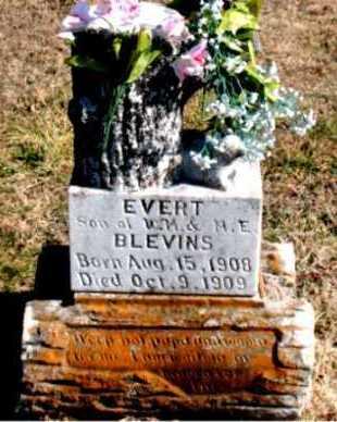 BLEVINS, EVERT - Carroll County, Arkansas   EVERT BLEVINS - Arkansas Gravestone Photos