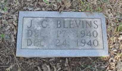 BLEVINS, J. C. - Carroll County, Arkansas | J. C. BLEVINS - Arkansas Gravestone Photos