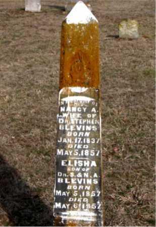 BLEVINS, NANCY A - Carroll County, Arkansas   NANCY A BLEVINS - Arkansas Gravestone Photos
