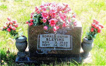 BLEVINS, RONALD DAVID - Carroll County, Arkansas | RONALD DAVID BLEVINS - Arkansas Gravestone Photos