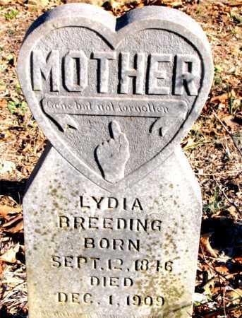 BREEDING, LYDIA - Carroll County, Arkansas   LYDIA BREEDING - Arkansas Gravestone Photos