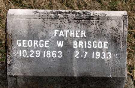 BRISCOE, GEORGE W - Carroll County, Arkansas | GEORGE W BRISCOE - Arkansas Gravestone Photos