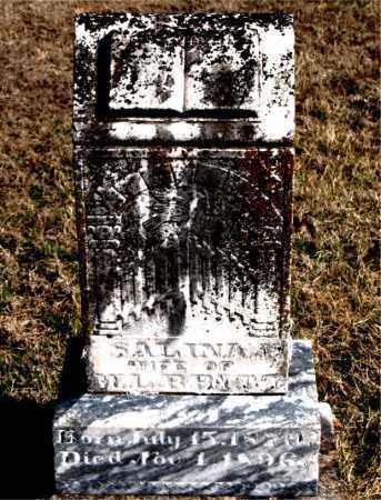 BRITT, SALINA J - Carroll County, Arkansas | SALINA J BRITT - Arkansas Gravestone Photos