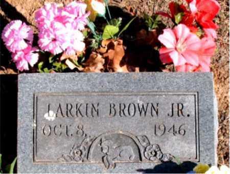 BROWN, JR., LARKIN - Carroll County, Arkansas   LARKIN BROWN, JR. - Arkansas Gravestone Photos