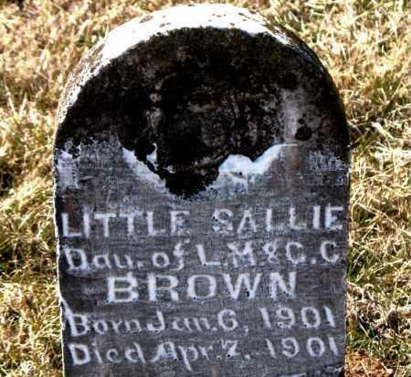 BROWN, SALLIE - Carroll County, Arkansas | SALLIE BROWN - Arkansas Gravestone Photos